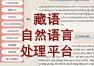 藏语自然语言处理平台